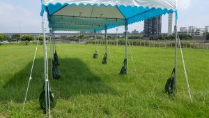 阿里山帳篷 橄欖球場
